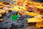 Legography - Andrew Whyte