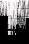 """Fotogramas"" - Armando Parvool"