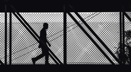 Armando Parvool - Fotogramas