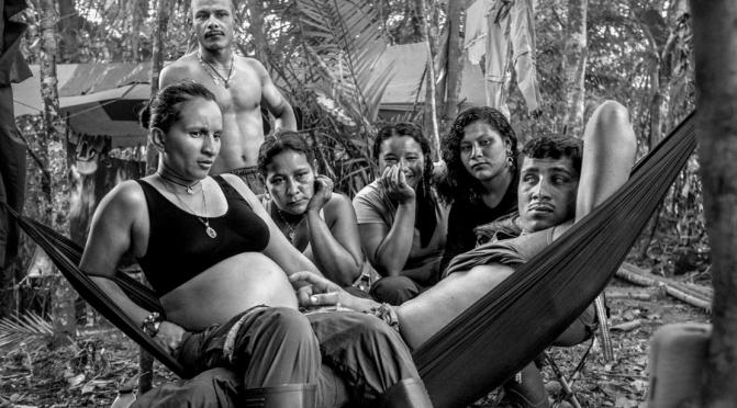 """""""Metamorfosis: Guerrilleros en busca de la paz"""" entrevista con Malcolm Linton"""